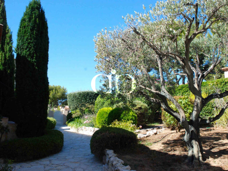 Cassis Maison E jardin